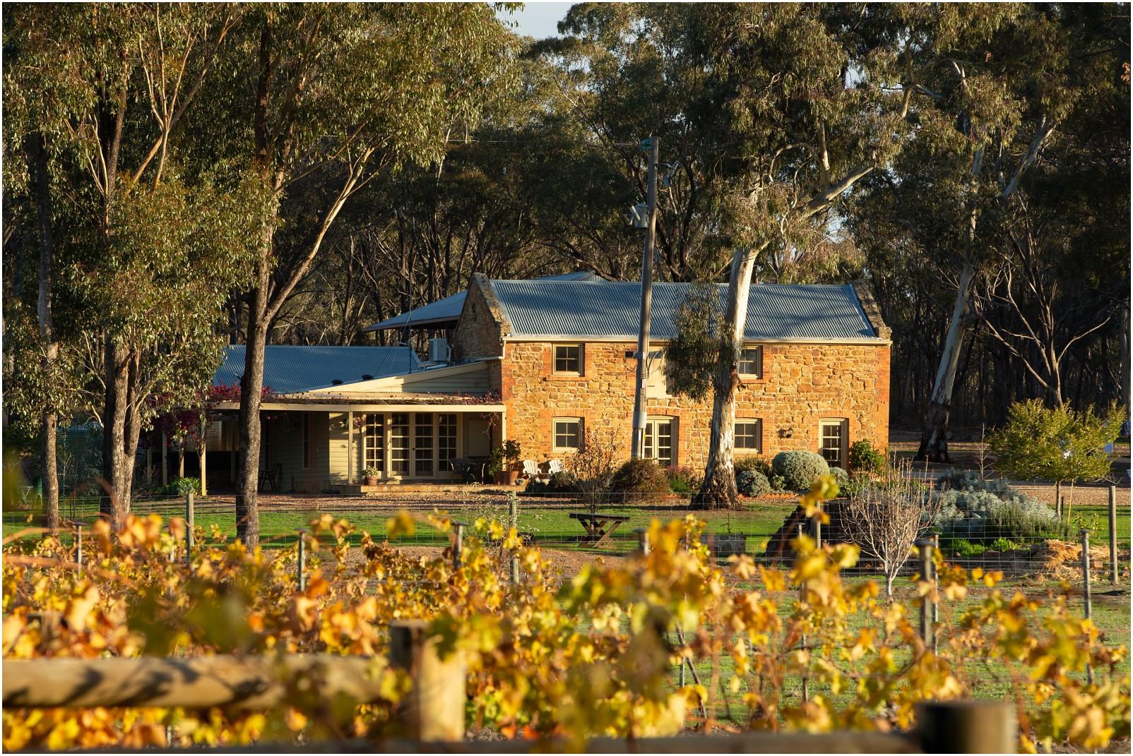 Byronsvale vineyard and accommadation_0001